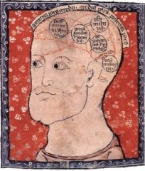 medieval-brain-255x300